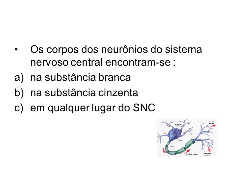 Os corpos dos neurônios do sistema nervoso central encontram-se : a)na substância branca b)na substância cinzenta c)em qualquer lugar do SNC