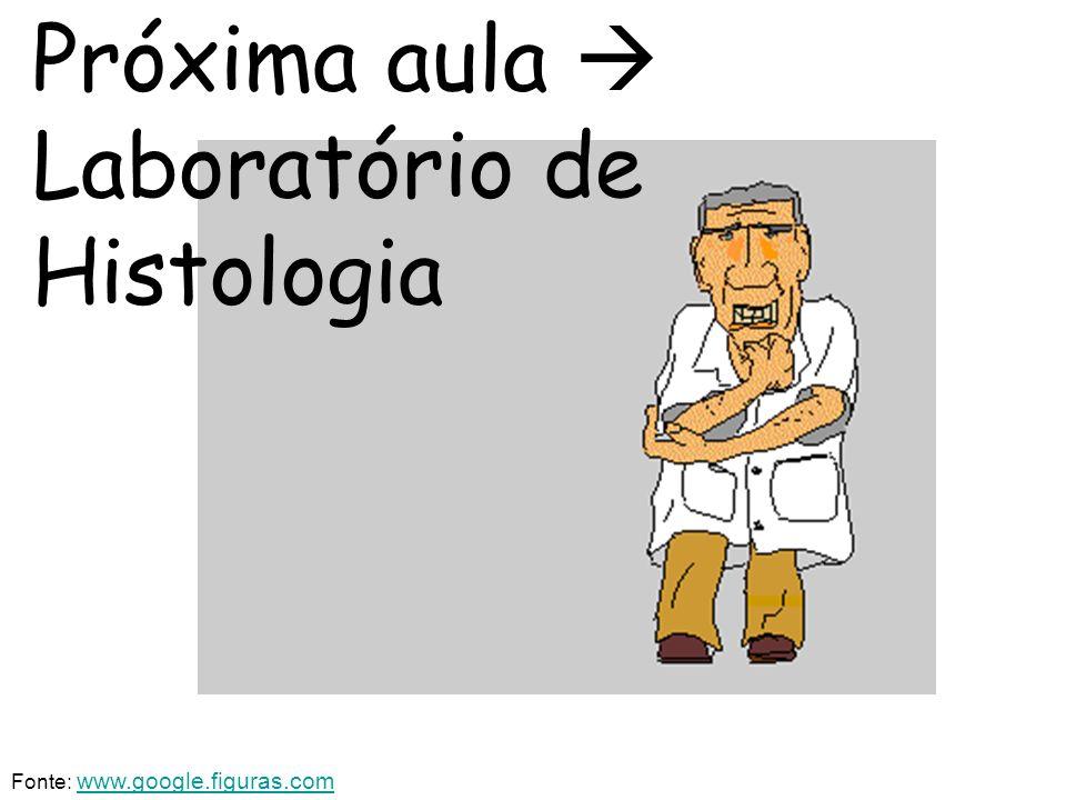 Próxima aula Laboratório de Histologia Fonte: www.google.figuras.comwww.google.figuras.com
