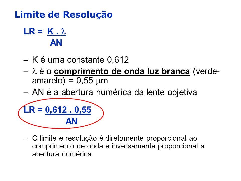 Limite de Resolução LR = K. AN –K é uma constante 0,612 – é o comprimento de onda luz branca (verde- amarelo) = 0,55 m –AN é a abertura numérica da le