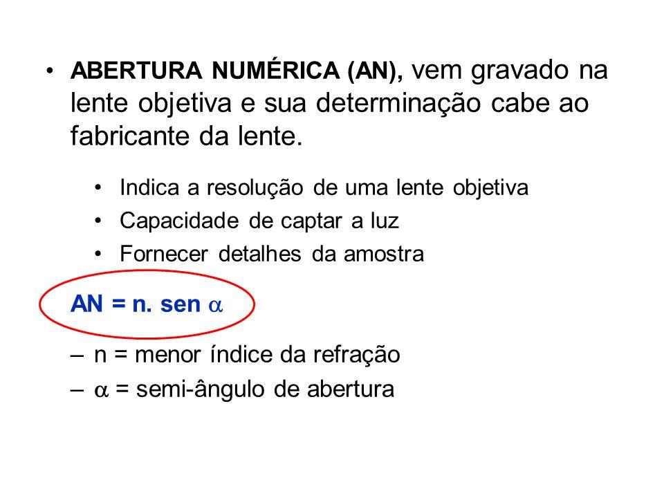 ABERTURA NUMÉRICA (AN), vem gravado na lente objetiva e sua determinação cabe ao fabricante da lente. Indica a resolução de uma lente objetiva Capacid