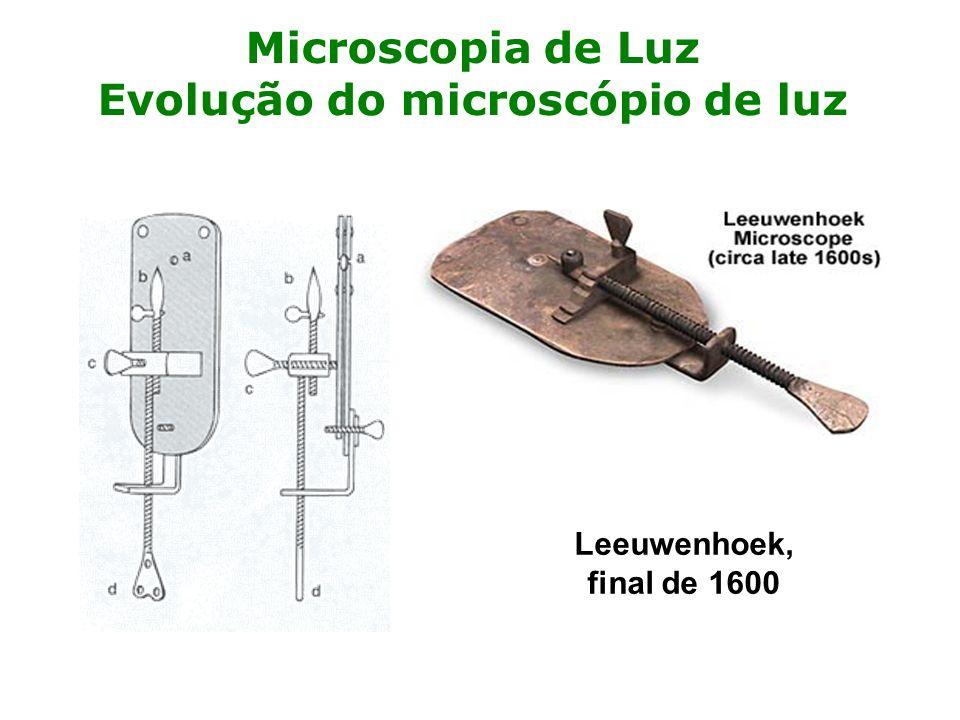 Microscopia de Luz Evolução do microscópio de luz Leeuwenhoek, final de 1600