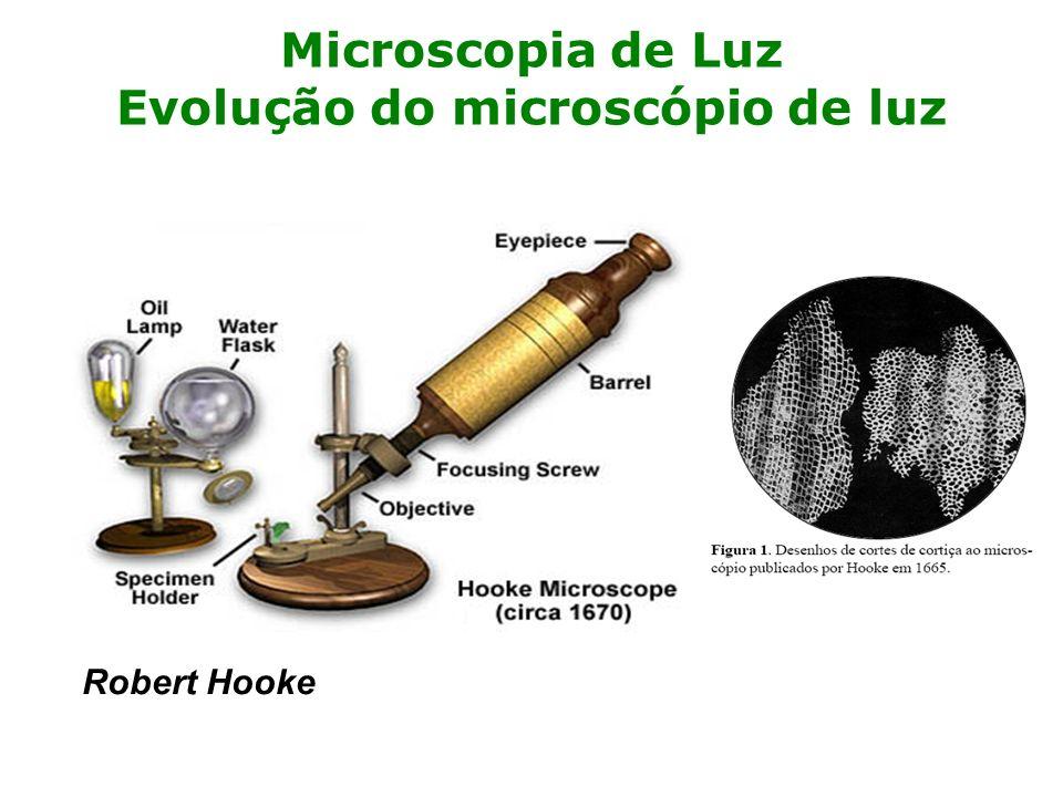 Microscopia de Luz Evolução do microscópio de luz Robert Hooke