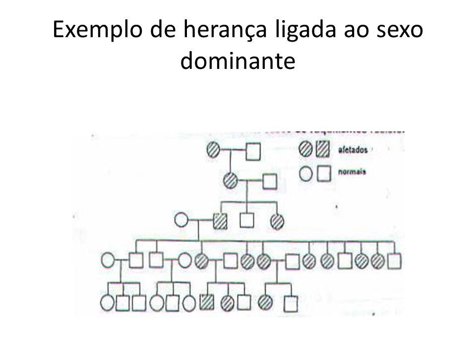 Exemplo de herança ligada ao sexo dominante