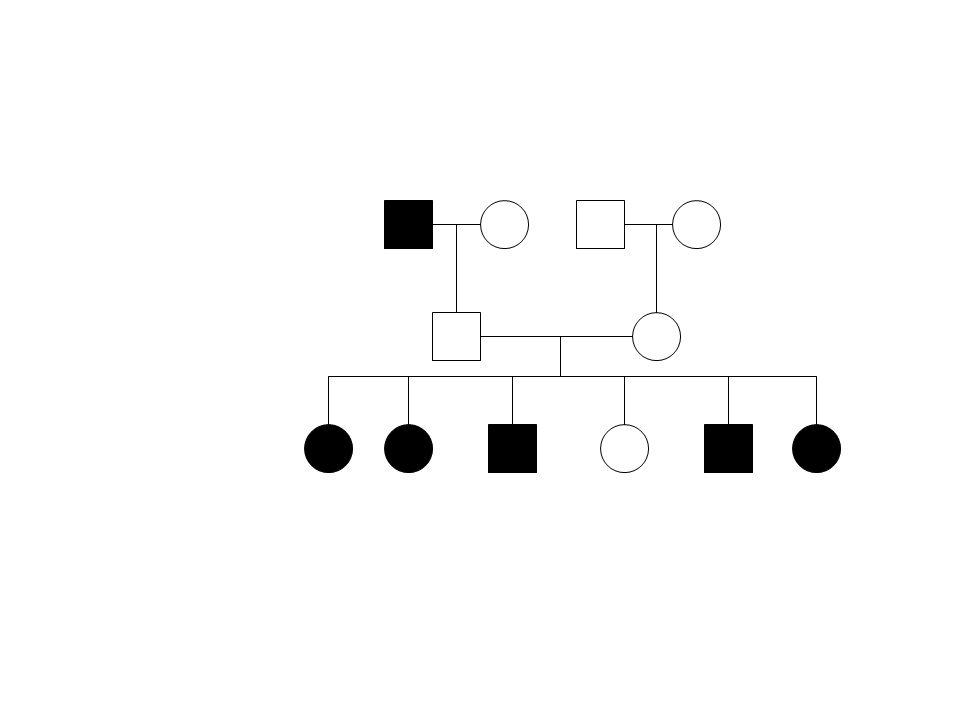Herança Autossômica Gene localizado num cromossomo autossômico.