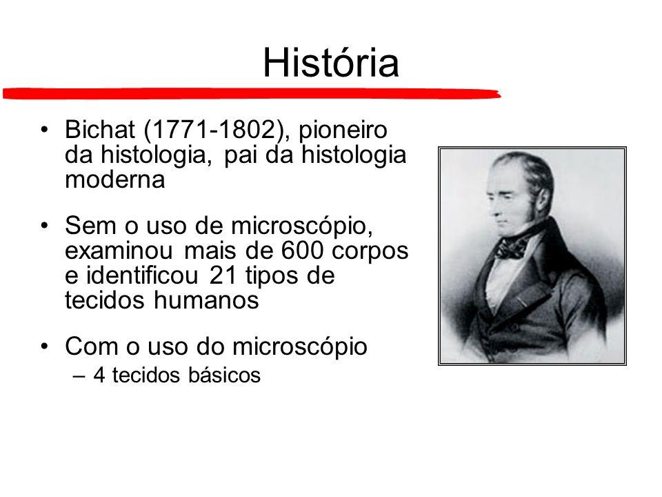 História Bichat (1771-1802), pioneiro da histologia, pai da histologia moderna Sem o uso de microscópio, examinou mais de 600 corpos e identificou 21
