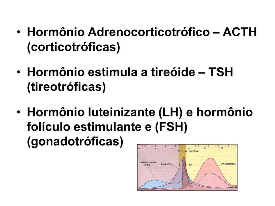Hormônio Adrenocorticotrófico – ACTH (corticotróficas) Hormônio estimula a tireóide – TSH (tireotróficas) Hormônio luteinizante (LH) e hormônio folícu
