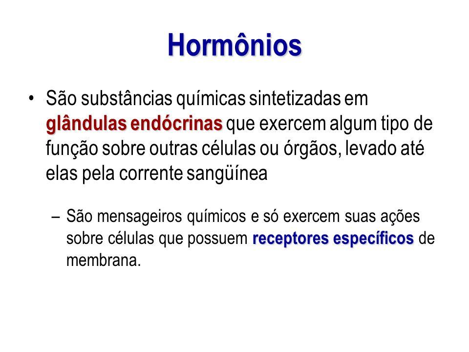 Hormônios glândulas endócrinasSão substâncias químicas sintetizadas em glândulas endócrinas que exercem algum tipo de função sobre outras células ou ó