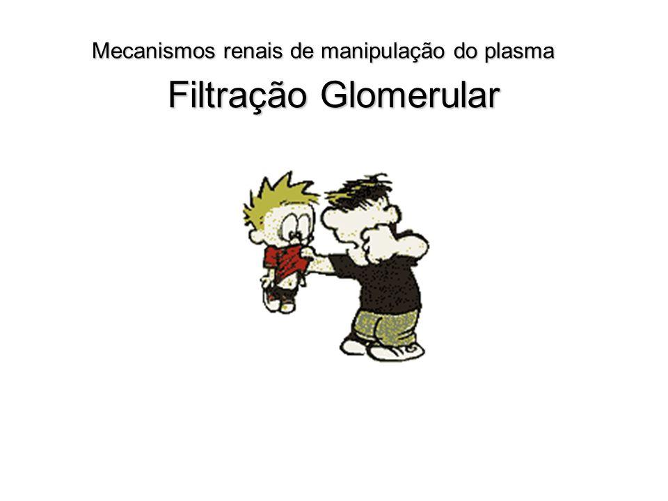 Mecanismos renais de manipulação do plasma Filtração Glomerular