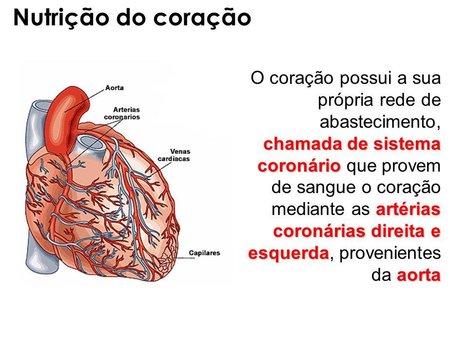 chamada de sistema coronário artérias coronárias direita e esquerda aorta O coração possui a sua própria rede de abastecimento, chamada de sistema cor