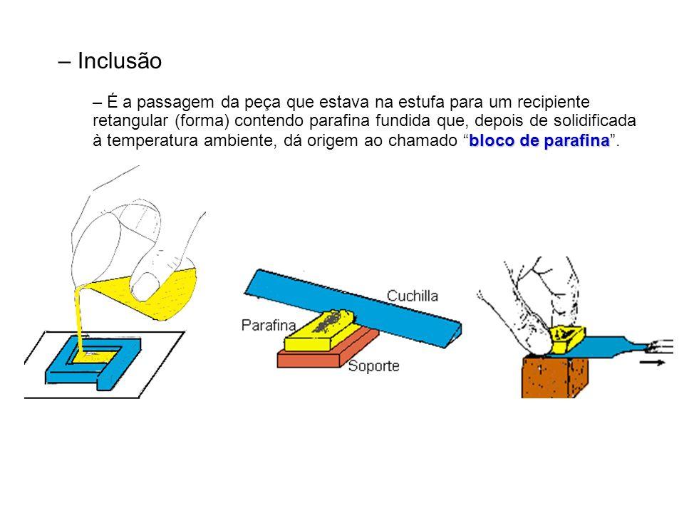 – Inclusão bloco de parafina – É a passagem da peça que estava na estufa para um recipiente retangular (forma) contendo parafina fundida que, depois de solidificada à temperatura ambiente, dá origem ao chamado bloco de parafina.