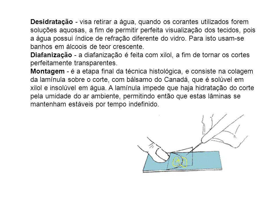 Desidratação - visa retirar a água, quando os corantes utilizados forem soluções aquosas, a fim de permitir perfeita visualização dos tecidos, pois a água possui índice de refração diferente do vidro.