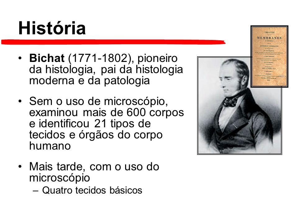História Bichat (1771-1802), pioneiro da histologia, pai da histologia moderna e da patologia Sem o uso de microscópio, examinou mais de 600 corpos e identificou 21 tipos de tecidos e órgãos do corpo humano Mais tarde, com o uso do microscópio –Quatro tecidos básicos