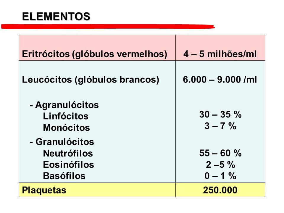 Eritrócitos (glóbulos vermelhos)4 – 5 milhões/ml Leucócitos (glóbulos brancos)6.000 – 9.000 /ml - Agranulócitos Linfócitos Monócitos 30 – 35 % 3 – 7 %