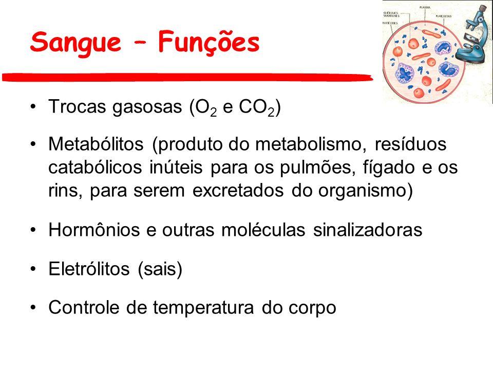 Trocas gasosas (O 2 e CO 2 ) Metabólitos (produto do metabolismo, resíduos catabólicos inúteis para os pulmões, fígado e os rins, para serem excretado