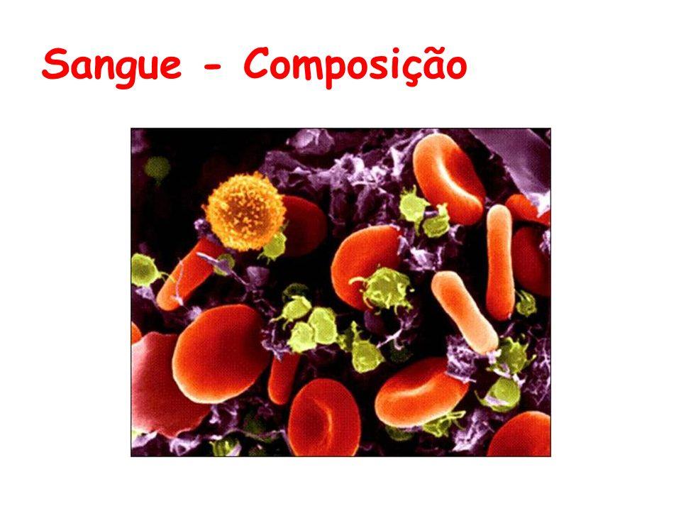 Composição do sangue Plasma Glóbulos Brancos, Plaquetas Glóbulos vermelhos Elementos Figurados