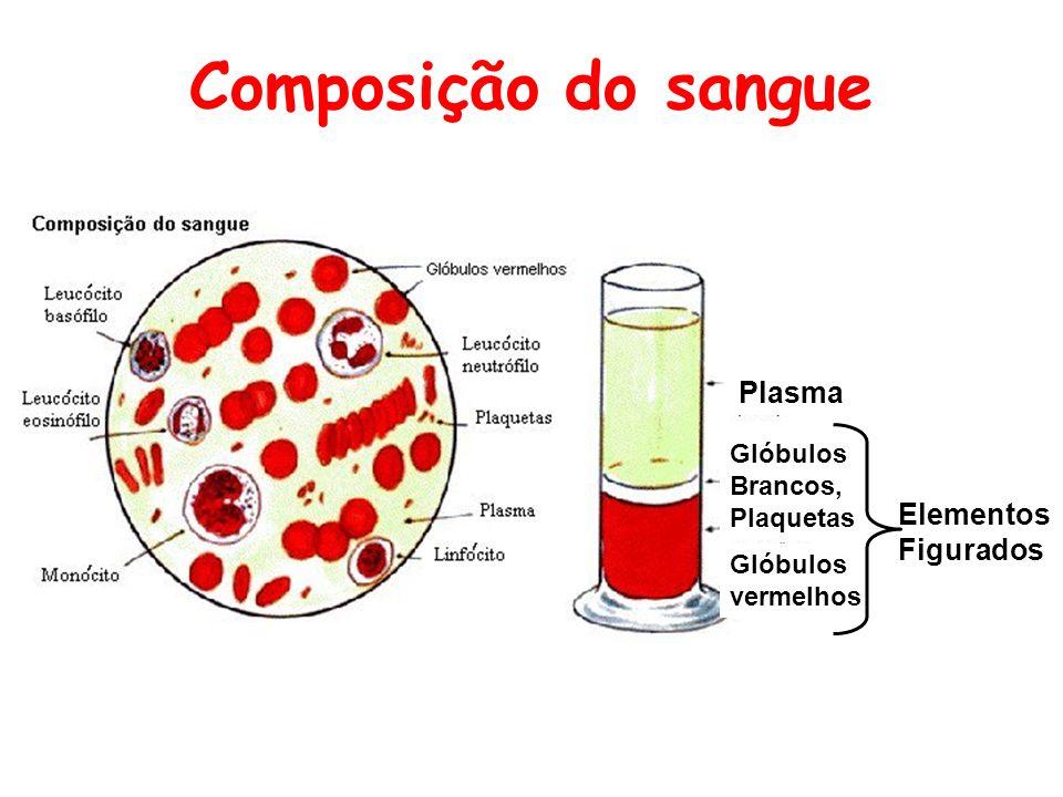 Sangue semSangue sem anticoagulante em um tubo coágulo comSangue com anticoagulante em um tubo três camadas.