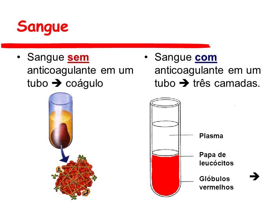 Sangue Sangue com anticoagulante em um tuboSangue com anticoagulante em um tubo três camadas –A camada superior, denominada de plasma, é translúcida, amarelo-palha e composta de água, proteínas e eletrólitos –Entre as duas camadas, há uma estreita camada, cremosa, composta de glóbulos brancos e plaquetas –A camada inferior, vermelho-escura, é composta de glóbulos vermelhos