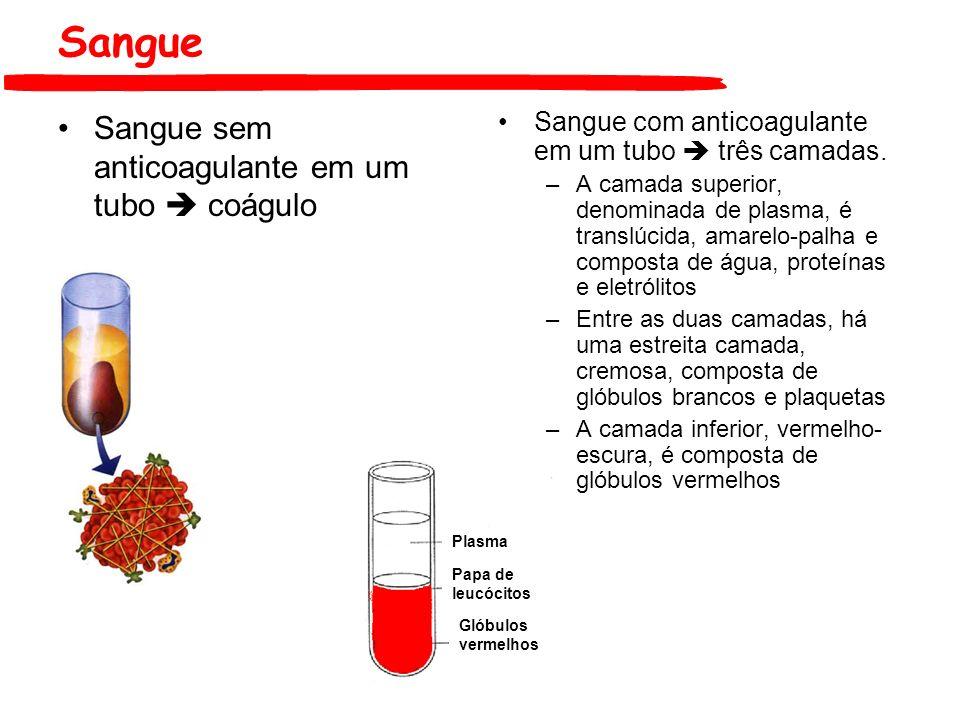 Sangue Sangue com anticoagulante em um tubo três camadas. –A camada superior, denominada de plasma, é translúcida, amarelo-palha e composta de água, p