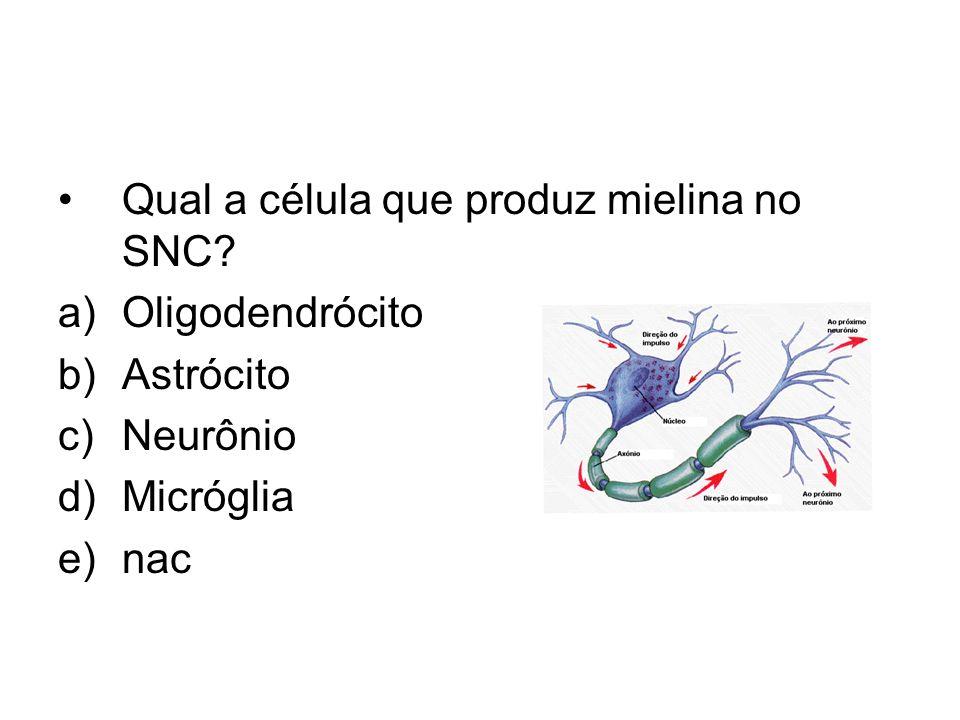 Qual a célula que produz mielina no SNC? a)Oligodendrócito b)Astrócito c)Neurônio d)Micróglia e)nac