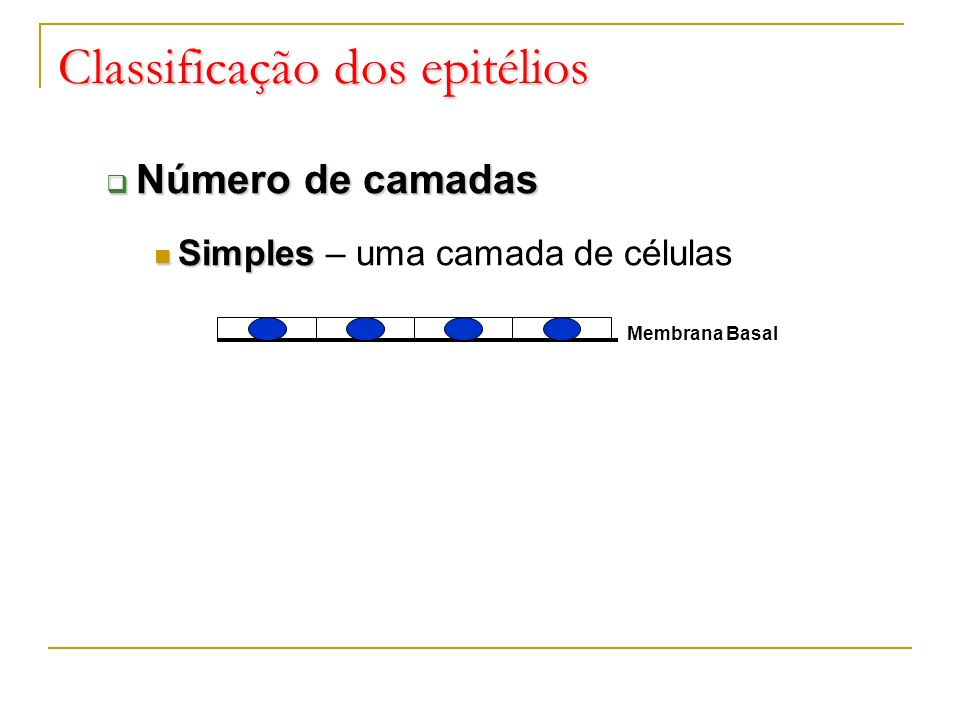 Número de camadas Número de camadas Simples Simples – uma camada de células Classificação dos epitélios Membrana Basal