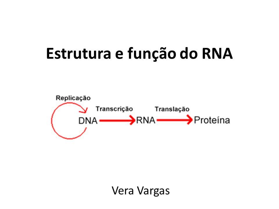 Estrutura e função do RNA Vera Vargas