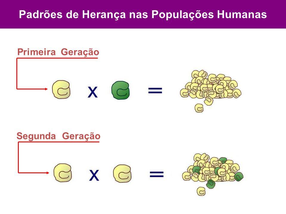 Padrões de Herança nas Populações Humanas Primeira Geração Segunda Geração