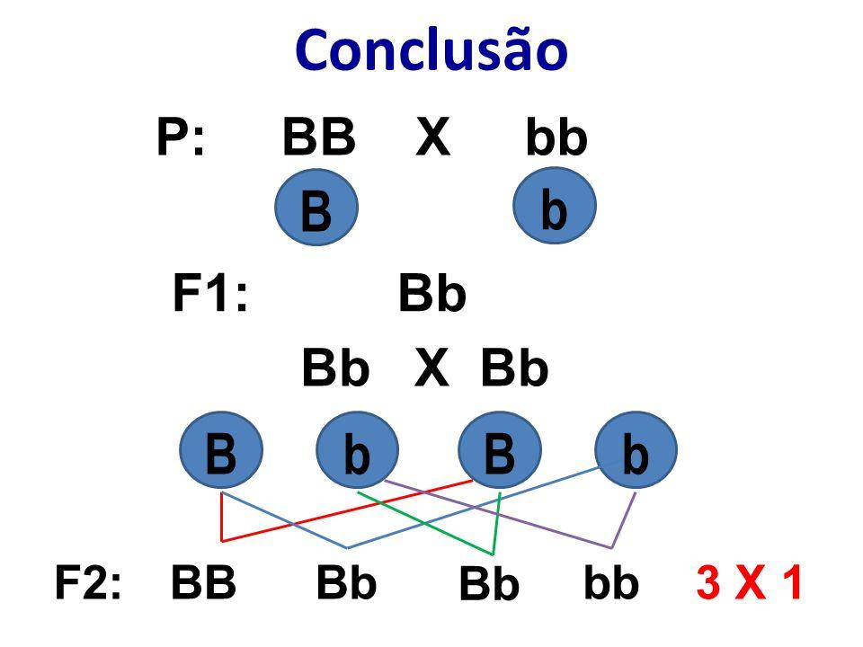 Conclusão P: BB X bb F1: Bb Bb X Bb BbBbBb BBBb bbF2:3 X 1