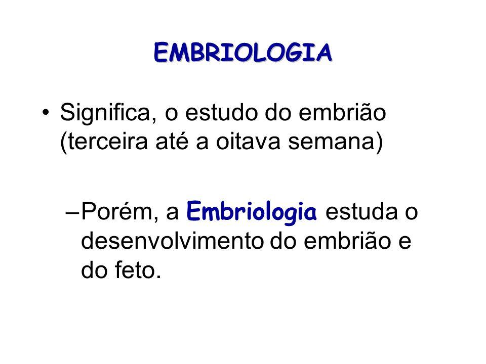 EMBRIOLOGIA Significa, o estudo do embrião (terceira até a oitava semana) –Porém, a Embriologia estuda o desenvolvimento do embrião e do feto.
