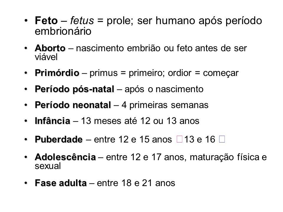 Feto – fetus = prole; ser humano após período embrionário AbortoAborto – nascimento embrião ou feto antes de ser viável PrimórdioPrimórdio – primus =