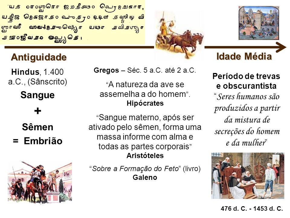 Gregos – Séc. 5 a.C. até 2 a.C. A natureza da ave se assemelha a do homem. Hipócrates Sangue materno, após ser ativado pelo sêmen, forma uma massa inf