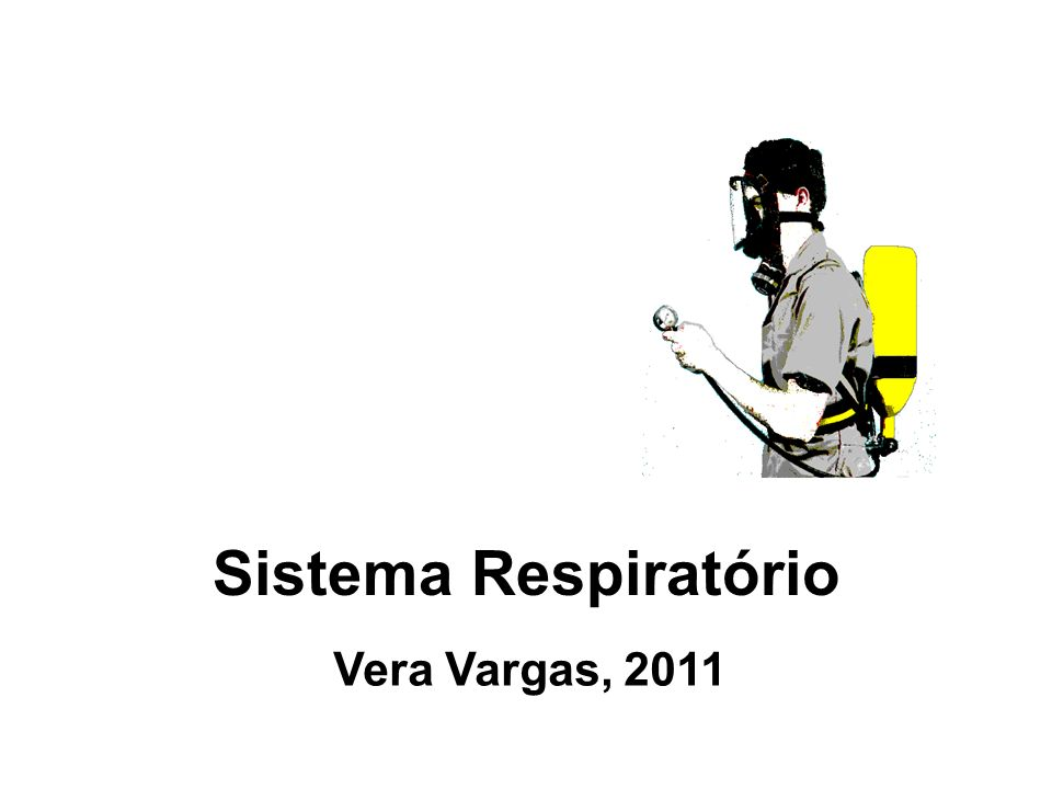 Sistema Respiratório Vera Vargas, 2011