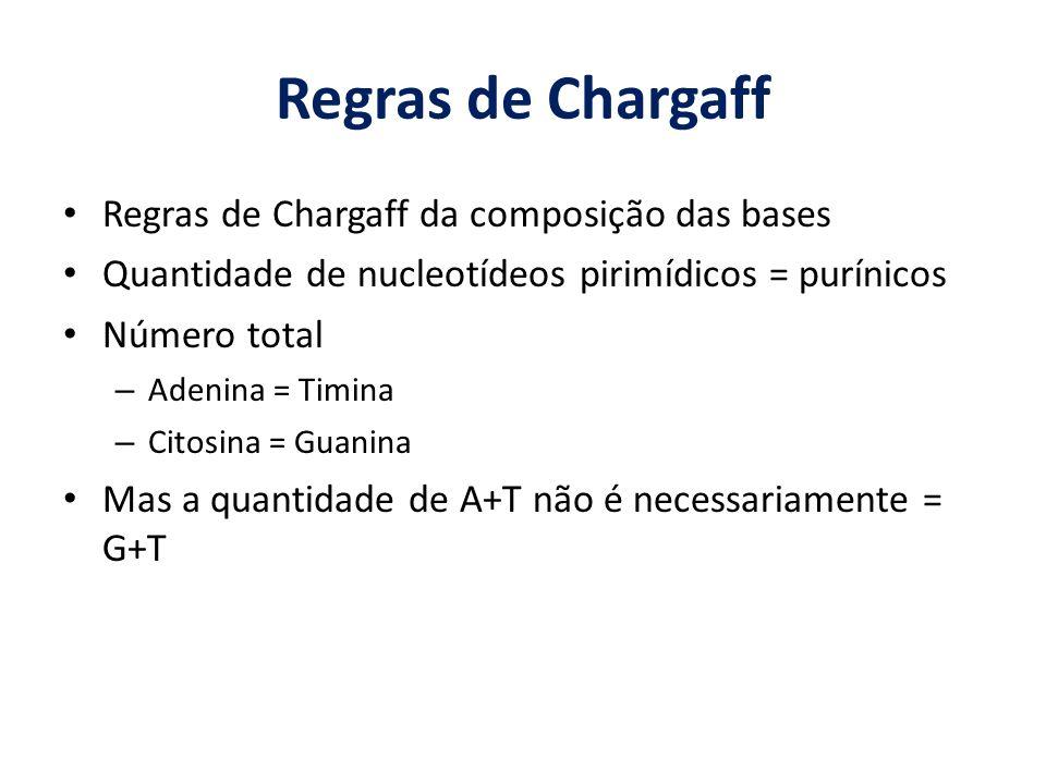 Regras de Chargaff Regras de Chargaff da composição das bases Quantidade de nucleotídeos pirimídicos = purínicos Número total – Adenina = Timina – Cit