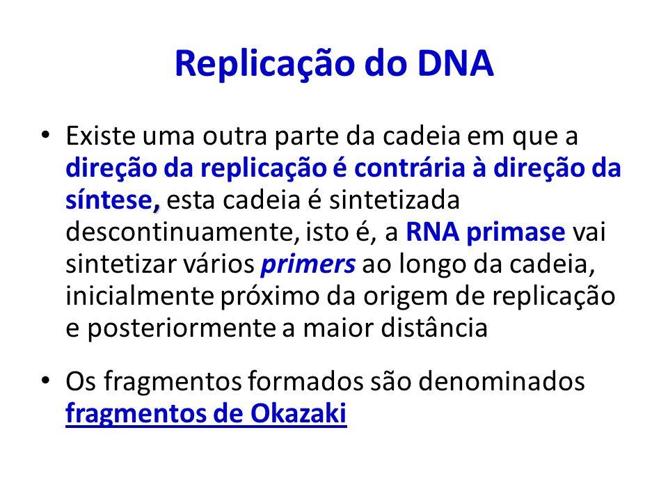 , Existe uma outra parte da cadeia em que a direção da replicação é contrária à direção da síntese, esta cadeia é sintetizada descontinuamente, isto é