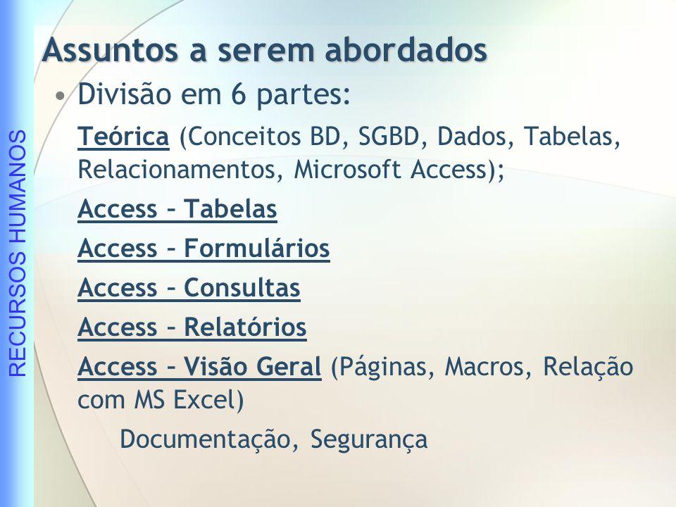 RECURSOS HUMANOS Visão geral Estrutura de um Banco de Dados Funcionamento do Microsoft Access Formulário Consulta Relatório Tabelas