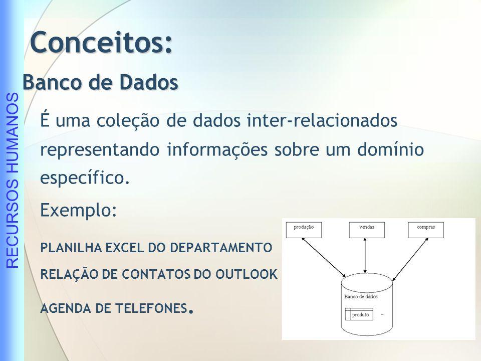 RECURSOS HUMANOS Conceitos: Dados Conjunto de símbolos arranjados a fim de representar a informação fora da mente humana.