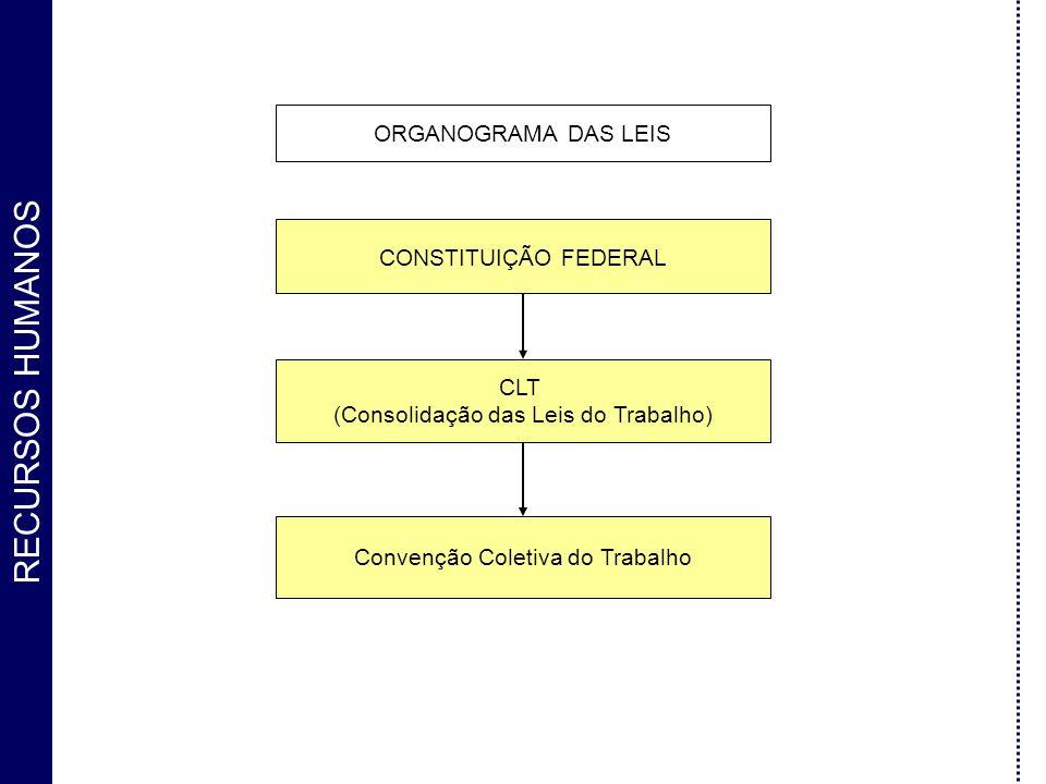 RECURSOS HUMANOS ORGANOGRAMA DAS LEIS CONSTITUIÇÃO FEDERAL CLT (Consolidação das Leis do Trabalho) Convenção Coletiva do Trabalho