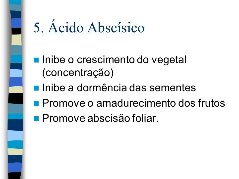5. Ácido Abscísico Inibe o crescimento do vegetal (concentração) Inibe a dormência das sementes Promove o amadurecimento dos frutos Promove abscisão f