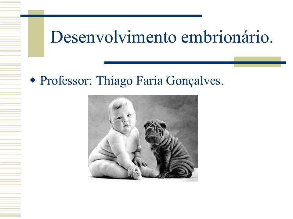 Desenvolvimento embrionário. Professor: Thiago Faria Gonçalves.
