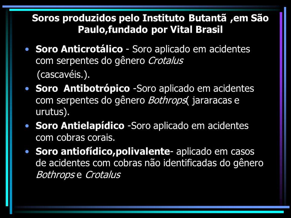 Soros produzidos pelo Instituto Butantã,em São Paulo,fundado por Vital Brasil Soro Anticrotálico - Soro aplicado em acidentes com serpentes do gênero Crotalus (cascavéis.).