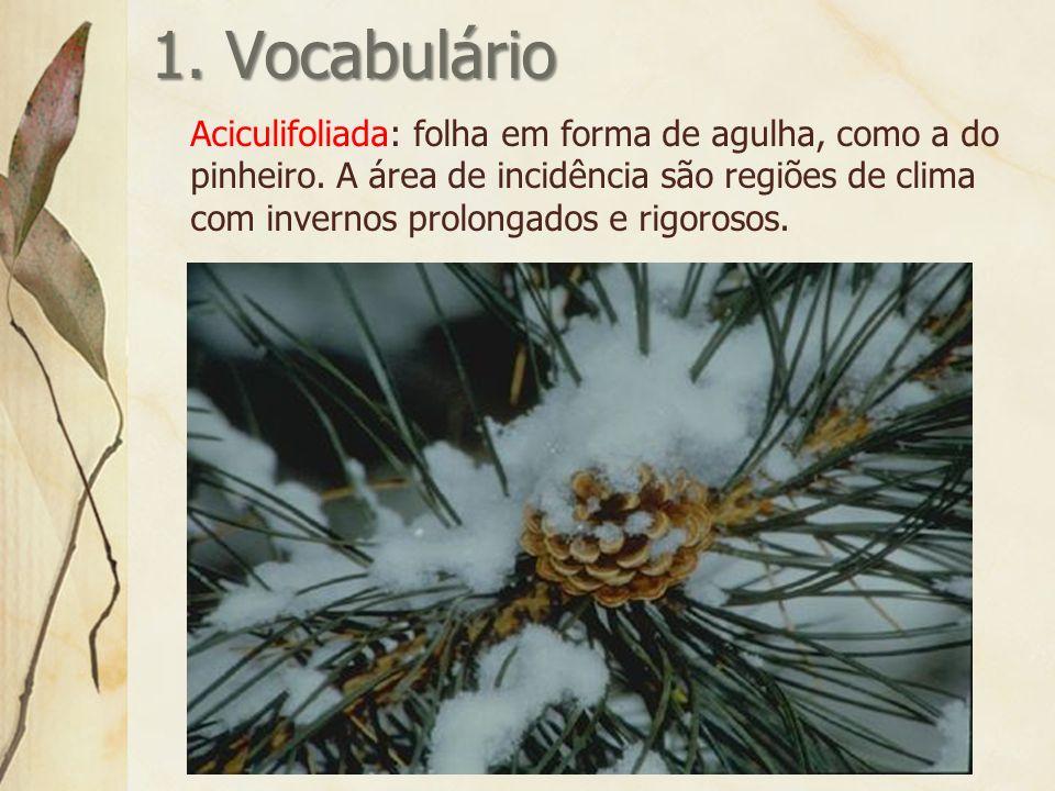 1.Vocabulário Aciculifoliada: folha em forma de agulha, como a do pinheiro.