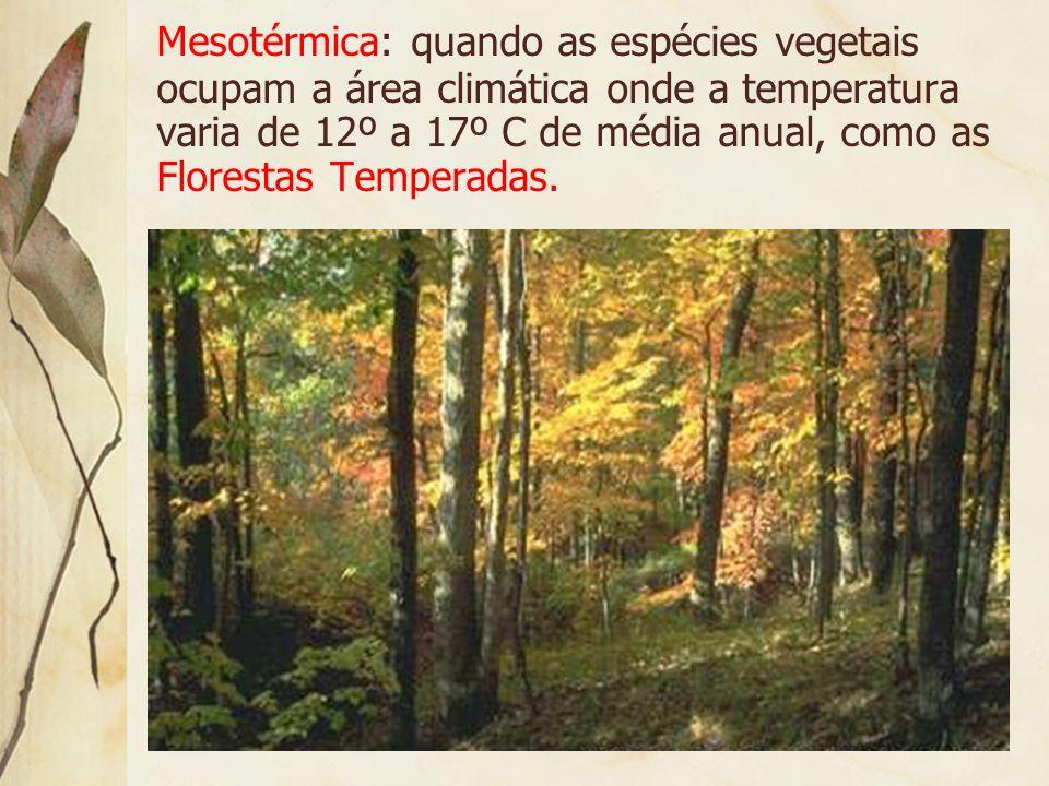 Megatérmica: quando sua área climática apresenta médias anuais superiores a 17º C, como a floresta equatorial, tropical, cerrados etc.