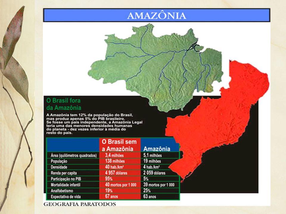 3.1 Floresta Equatorial Ocorre nas áreas de baixas latitudes, onde predomina o clima quente e úmido, a exemplo da Amazônia, faixa centro- ocidental da