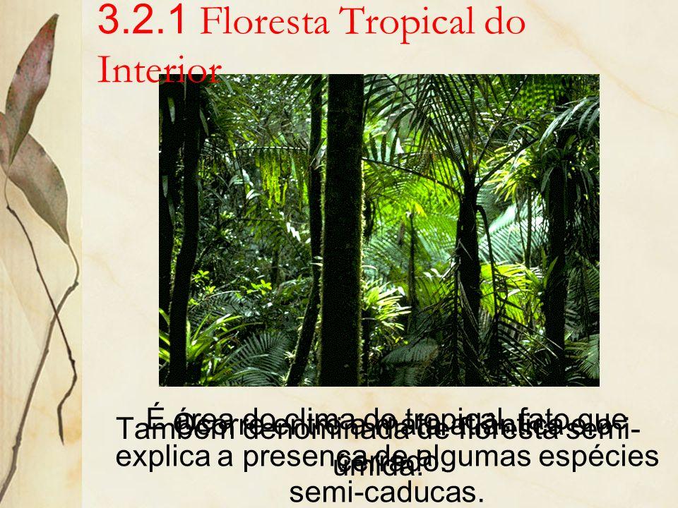 3.2 Floresta Tropical Ocupa parcela significativa do Brasil. De acordo com sua localização e diferenciações do meio e da fisionomia, a floresta tropic