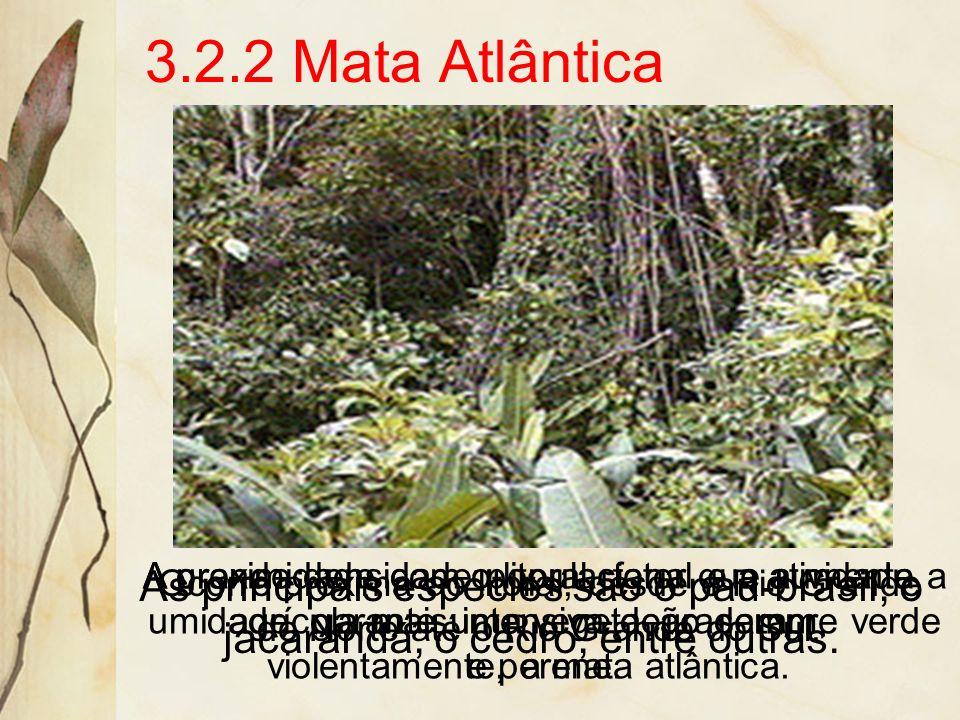As principais espécies são a peroba, o cedro e as orquídeas. Sua degradação é intensa, devido à elevada densidade demográfica da área e à agrícultura.