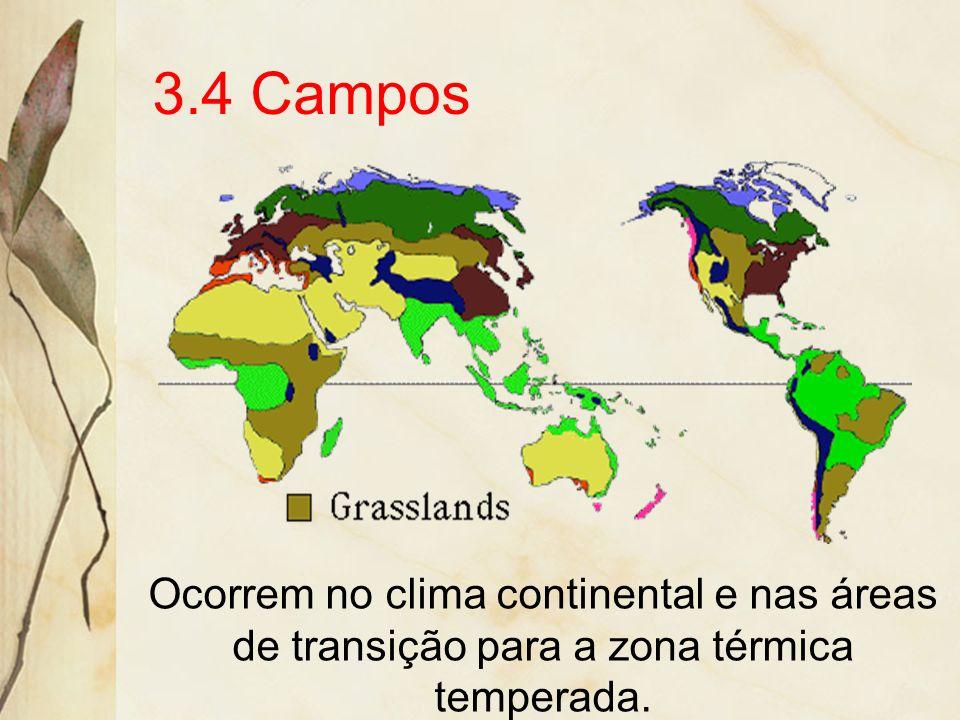 A produção de carvão vegetal, a partir do cerrado, devasta extensas áreas, principalmente em Minas e Goiás. No norte de Minas surgem os primeiros núcl