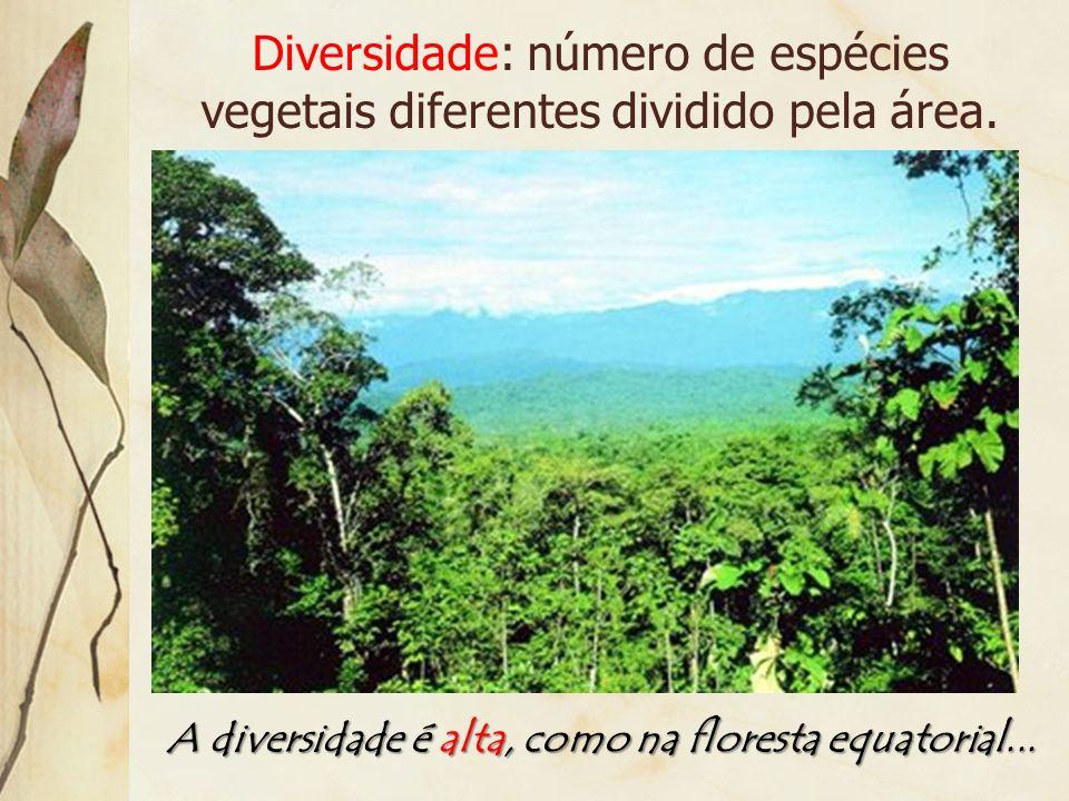 Diversidade: número de espécies vegetais diferentes dividido pela área.