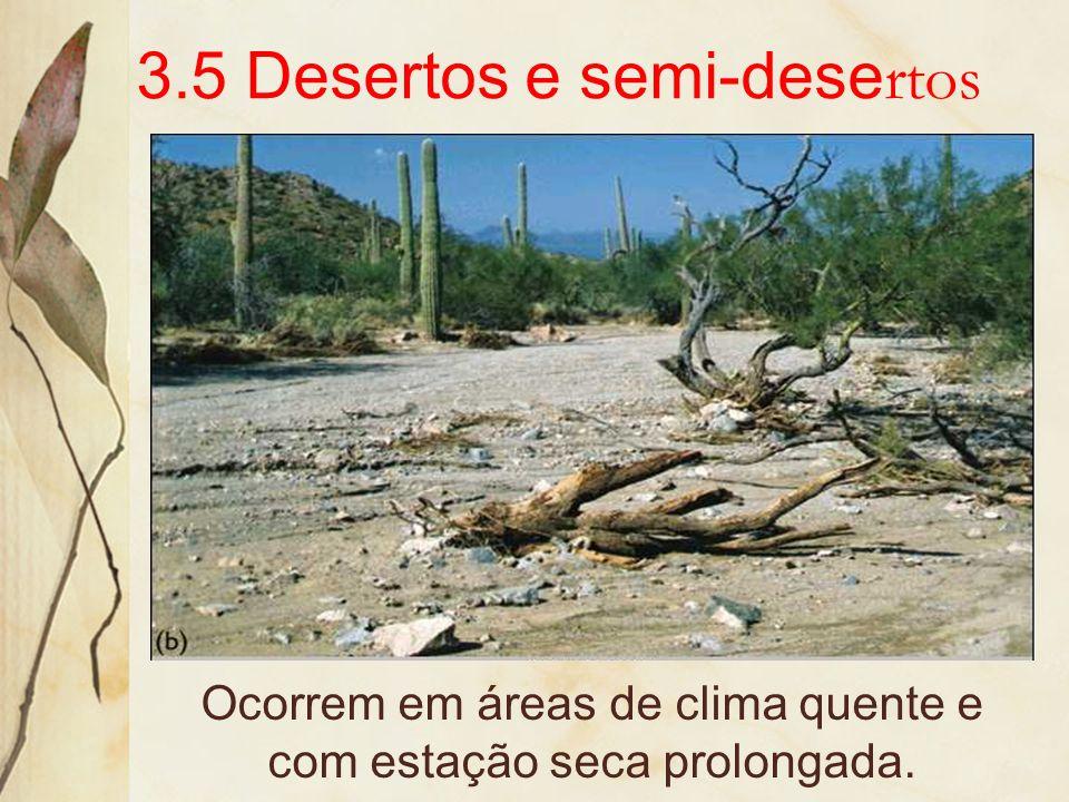 e os campos de inundação da ilha do Marajó.