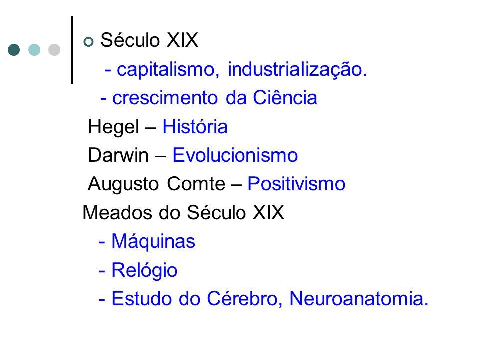 Século XIX - capitalismo, industrialização. - crescimento da Ciência Hegel – História Darwin – Evolucionismo Augusto Comte – Positivismo Meados do Séc