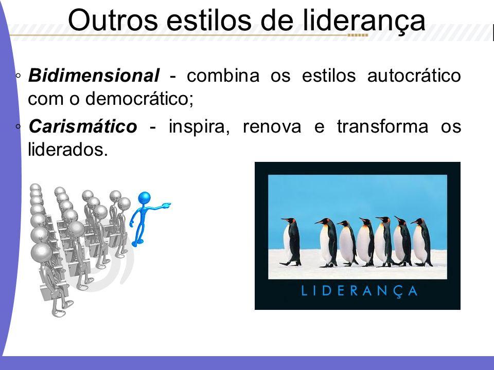 Bidimensional - combina os estilos autocrático com o democrático; Carismático - inspira, renova e transforma os liderados. Outros estilos de liderança