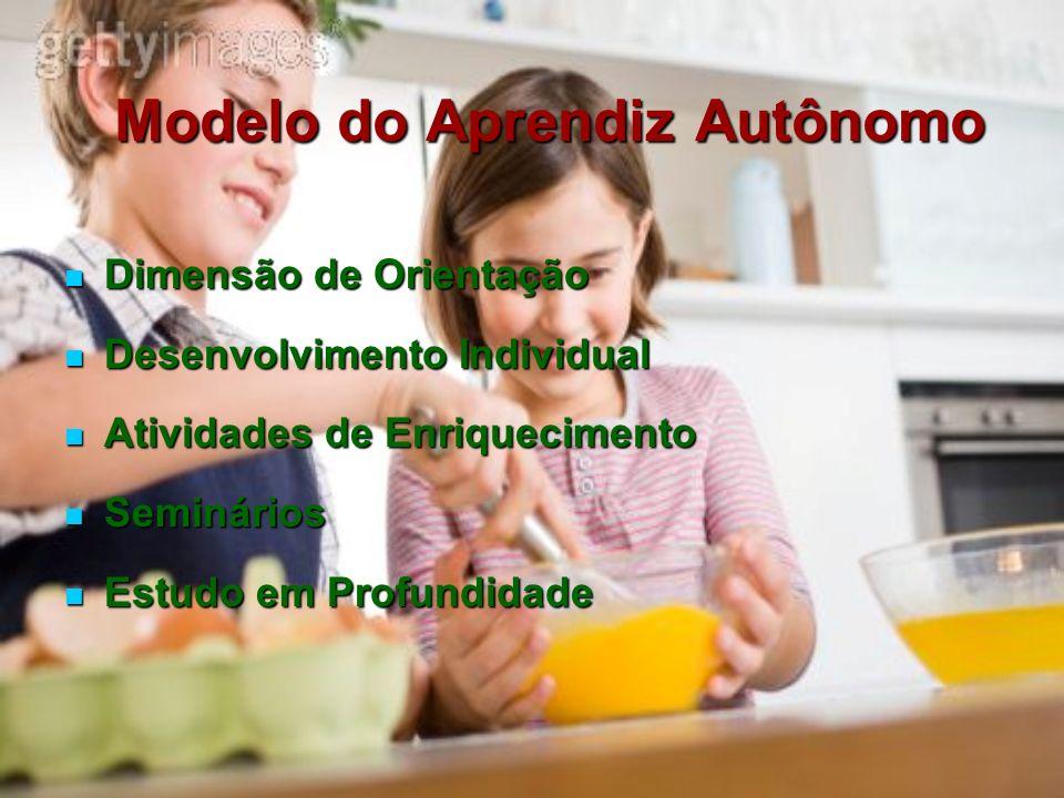 Modelo do Aprendiz Autônomo Dimensão de Orientação Dimensão de Orientação Desenvolvimento Individual Desenvolvimento Individual Atividades de Enriquec